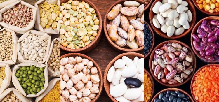 Protein Ingredients Industry-top diet trends